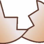 卵の殻は、植物の肥料になるのか? 気になる疑問にお答えします