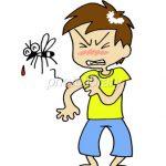 蚊に刺されると、時々すごく腫れるのはなぜ? 気になる疑問にお答えします。