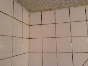 浴室のタイルの目地の黒ずみ
