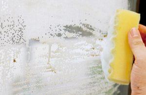 網戸の汚れている部分を軽くこすり洗いします。