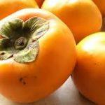 柿(カキ)の育て方について 美味しく、元気に育てるコツを紹介します