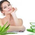 アロエの美容効果がすごい!!美容に効くアロエの種類と効果的な利用方法