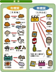 化成肥料と有機肥料の違い1