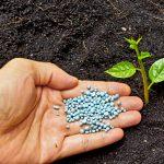 肥料の与え方について 効果的な肥料の与え方と失敗しない方法を紹介します