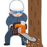 樹木の駆除・伐採方法について 除草剤を使用しない方法や根まで枯らす方法を紹介します